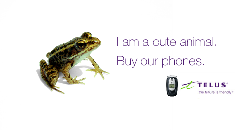 I am a cute animal. Buy our phones.